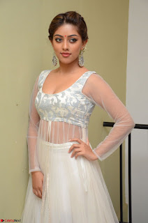 Anu Emmanuel in a Transparent White Choli Cream Ghagra Stunning Pics 081.JPG