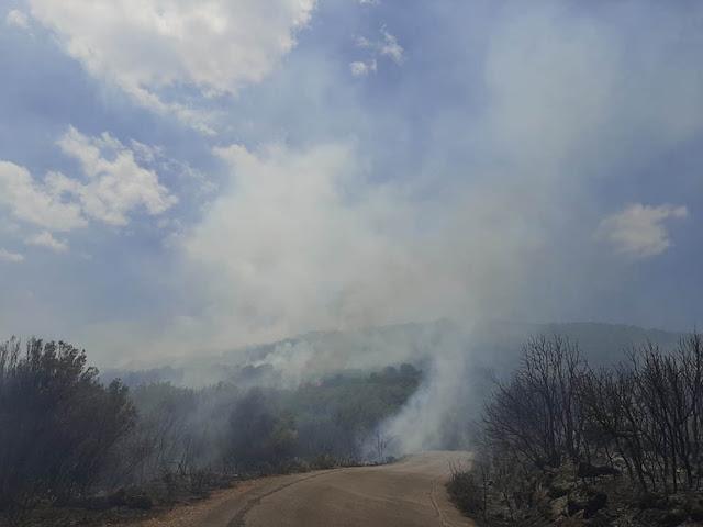 Υπό έλεγχο η πυρκαγιά στη Μεσσηνία