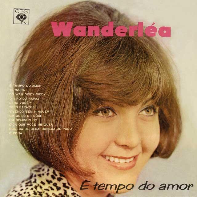 cantora wanderléa