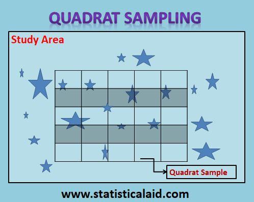Quadrat Sampling: Application with Advantages and Disadvantages