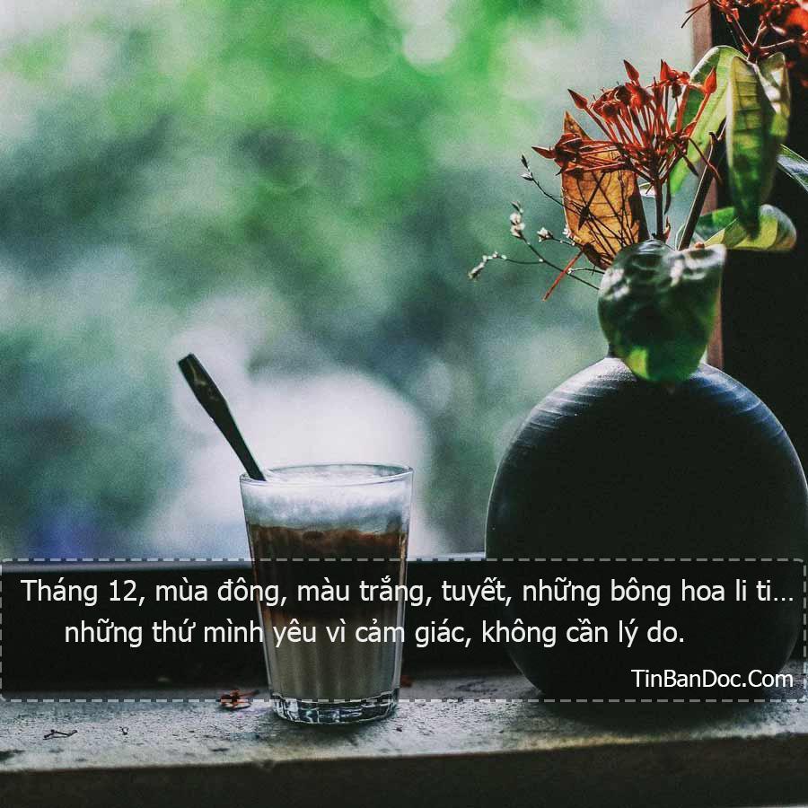 Những Câu Nói Hay Về Mùa Đông Buồn Cô Đơn Lạnh Lẽo Về Tình Yêu