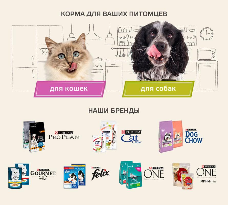 Корма для ваших питомцев от PURINA уникальная линейка инновационных продуктов