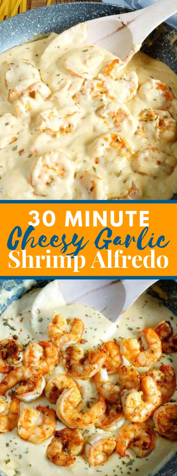 30 Minute Cheesy Garlic Shrimp Alfredo #dinner #homemade
