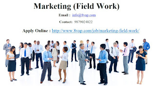 Marketing (Field Work)