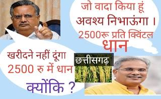 cg dhan msp,cg dhan samarthan mulya 2020,cg dhan samarthan mulya 2020,chhattisgarh dhan samarthan mulya, dhan ka samarthan mulya 2020 chhattisgarh,