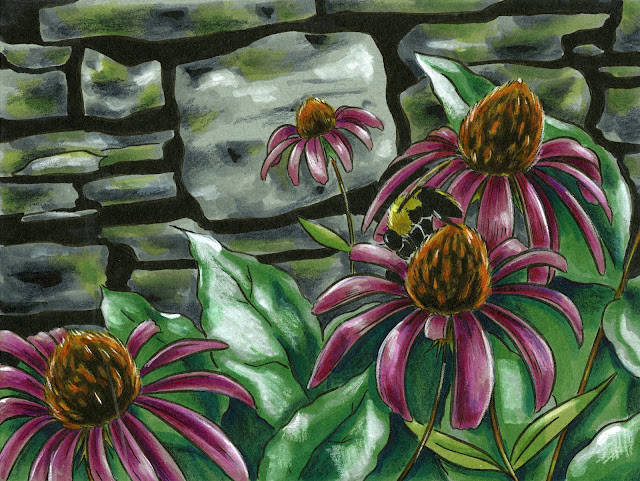 Illustration of bee and coneflowers in Copic marker