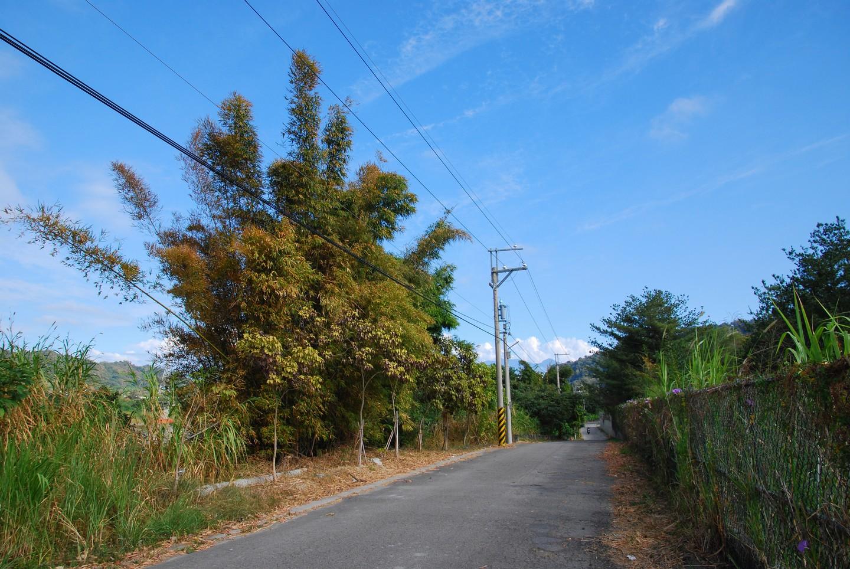 東豐自行車綠廊 16-300mm