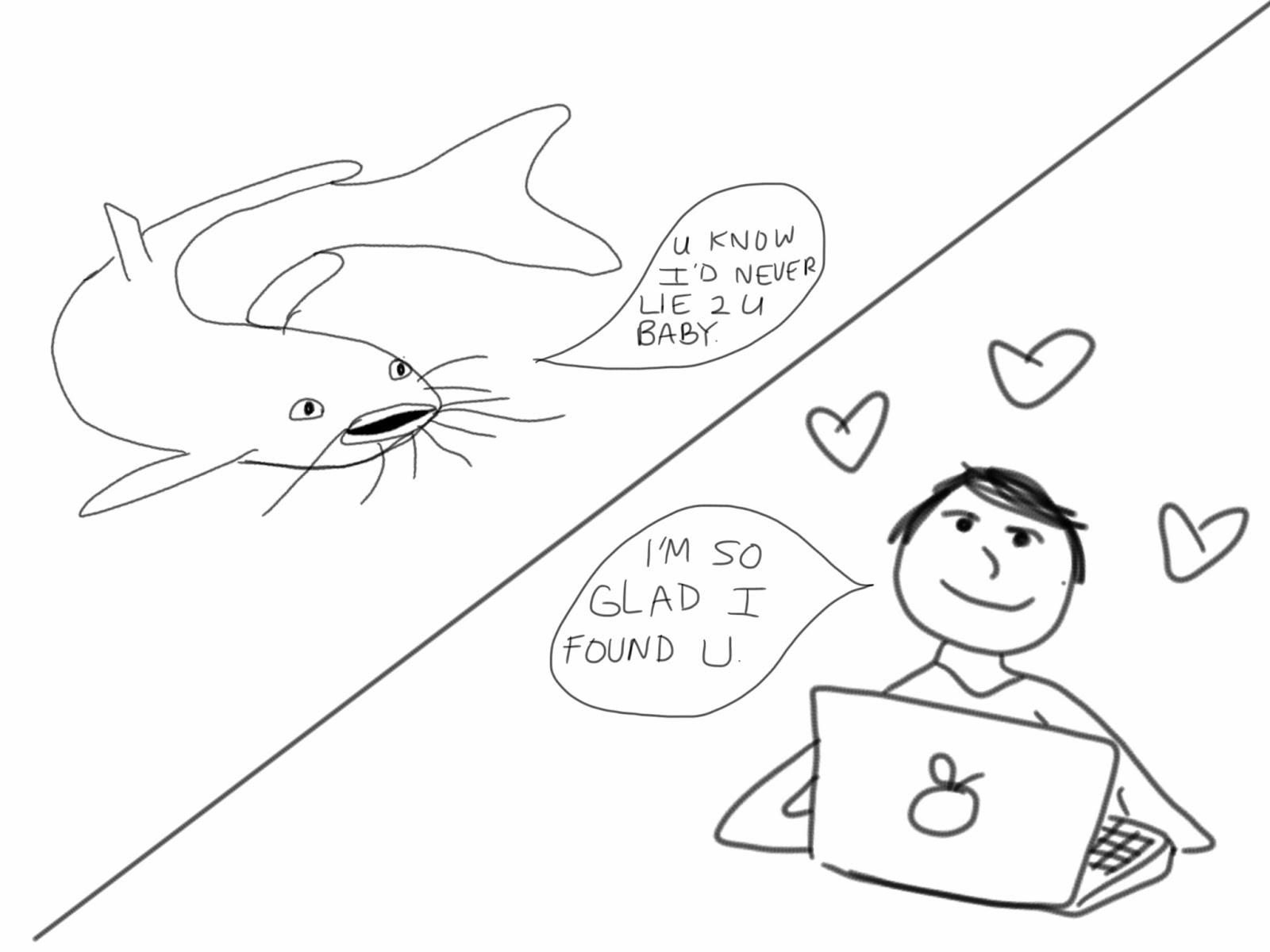 channel catfish drawing Wells Catfish