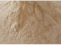 What is Lumbrokinase? | allearthworms