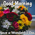 Top 10 Good Morning ji  Wishes.Images greeting Pictures,Photos for Whatsapp