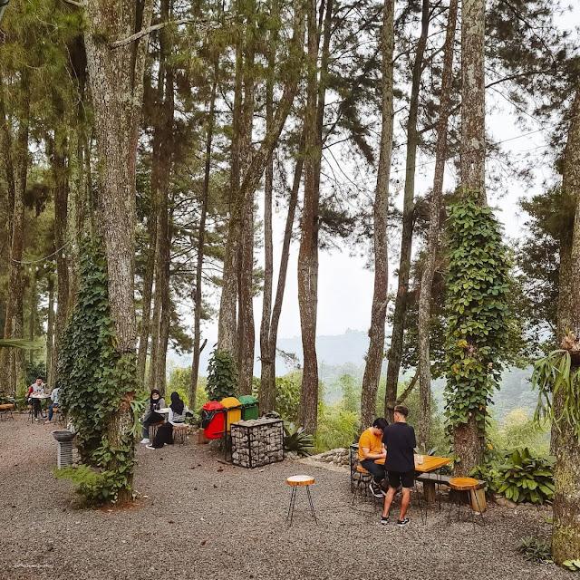 Lokasi dan Harga Menu Aranya Coffee and Forest Bogor