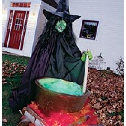 The Witch and Her Cauldron