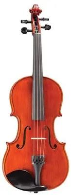 Best Beginners Violin