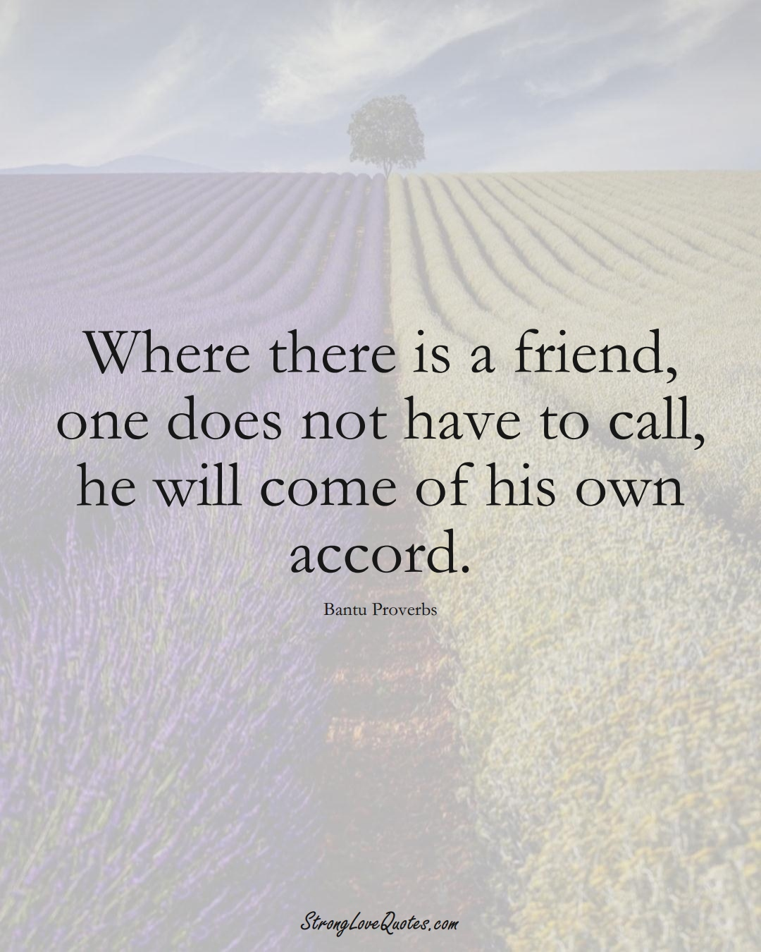 Where there is a friend, one does not have to call, he will come of his own accord. (Bantu Sayings);  #aVarietyofCulturesSayings