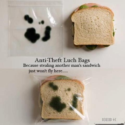 Funny Anit-theft Lunch Bag