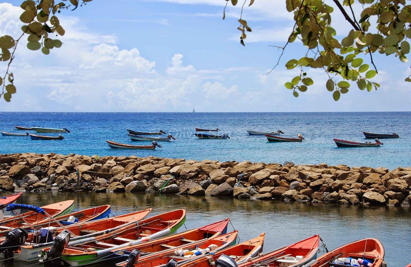 Petite Anse, Martinique