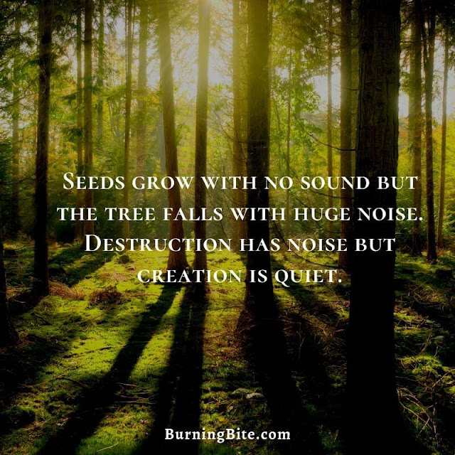 Seeds grow with no sound but the tree falls with huge noise. Destruction ha noise but creation is quiet.
