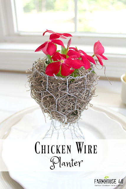 Chicken wire planter