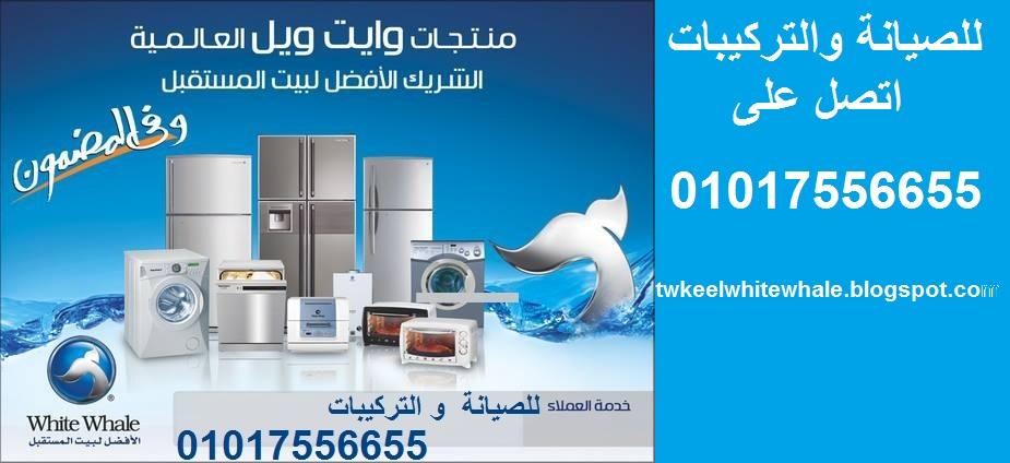 شركة وايت ويل مصر