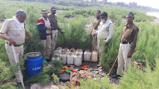 आबकारी विभाग ने की कार्यवाही 31 लीटर हाथ भट्टी मदिरा व 535 किलो महुआ लहान किया जप्त