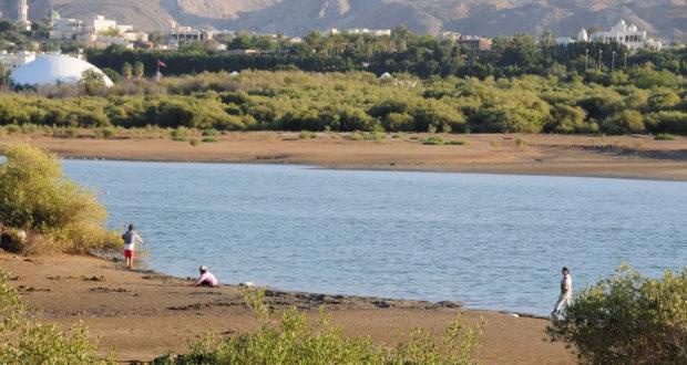 محمية القرم سلطنة عمان والكائنات الحية النادرة