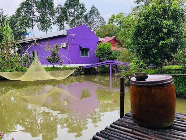 Hình chụp Ngôi nhà màu tím ở Cần Thơ
