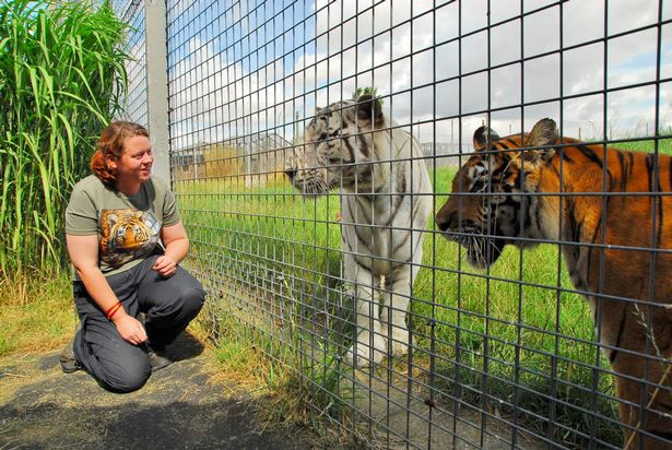 Rosa King died when a tiger entered an enclosure she was working in