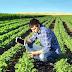 Projeto de Delmasso cria o Programa Primeiro Crédito para a Juventude Rural