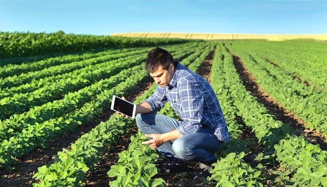 Jovens tem uma importância vital para o futuro da agricultura familiar no Brasil
