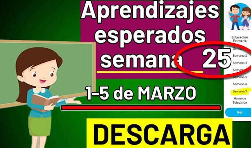 🧠🎒 DESCARGA los aprendizajes esperados de la semana 25 (1 - 5 MARZO 2021)