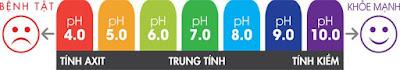 Bảng thang đo PH