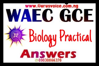 WAEC Gce 2019 Biology Practical Runz