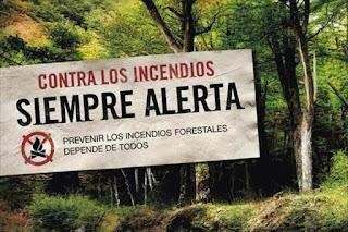 Endesa destina 66,8 millones de euros para trabajos forestales y mejoras en la campaña estival