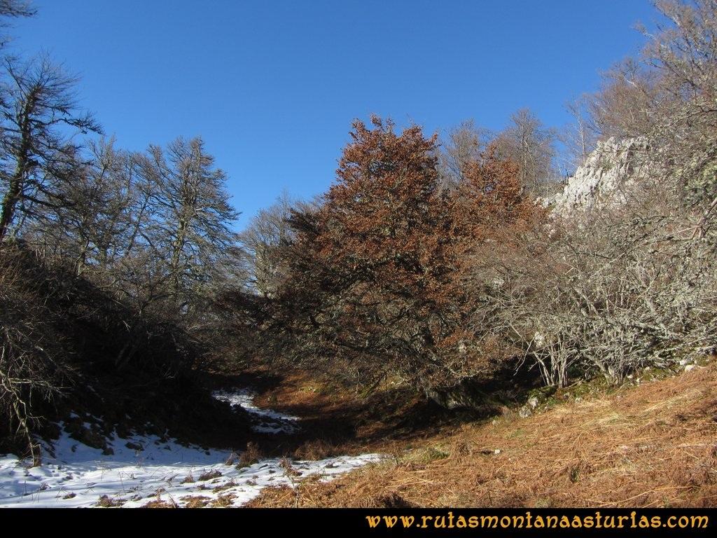 Pico Mosquito desde Tarna: Camino al pico Mosquito