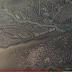 """Εκβολές Σπερχειού Ποταμού...""""Ο πράσινος πλανήτης"""" το πιο απόκοσμο τοπίο στην Ελλάδα UP'ο ψηλά![βίντεο]"""