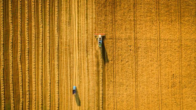 Η διαδικασία για την έκδοση βεβαίωσης επαγγελματία αγρότη