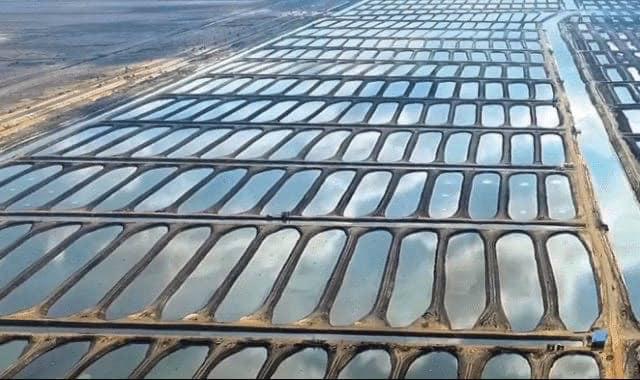يفتتح الرئيس عبد الفتاح السيسي صباح اليوم السبت عدد من المشروعات بمحافظة بورسعيد.والفيوم والنوباريه والعين السخنه