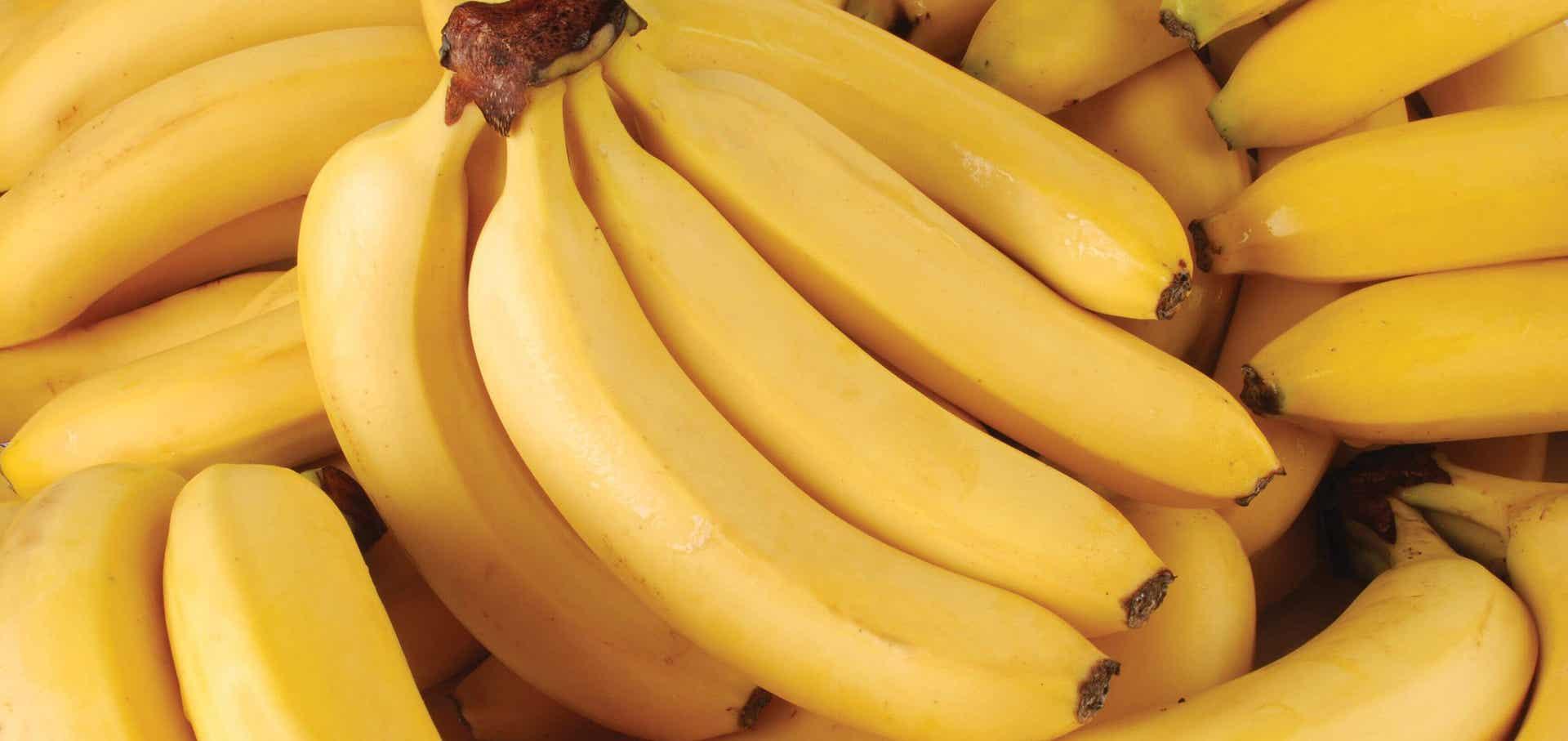 tiga-perbedaan-nutrisi-antara-pisang-cavendish-dan-pisang-raja