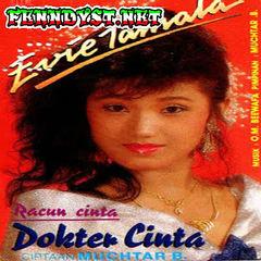 Evie Tamala - Dokter Cinta (1989) Album cover