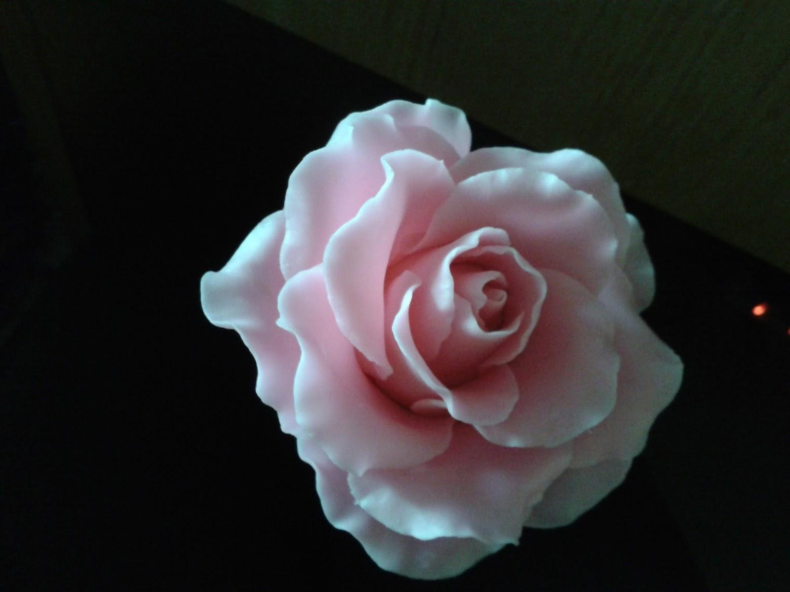 每天都在想念你: 麵粉花一玫瑰