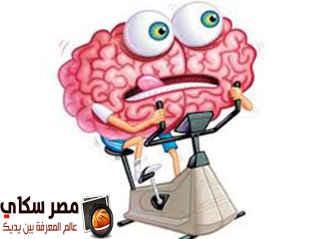 ماهى علاقة ممارسة الرياضة بالمخ والحالة الذهنية ؟
