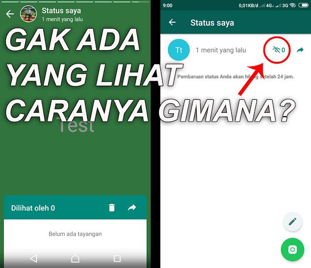 Melihat Status Watsapp Tanpa Diketahui