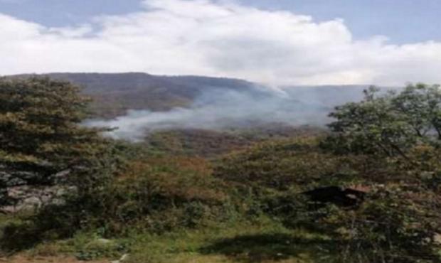 Comunidad Andina expresa solidaridad con afectados por los incendios forestales