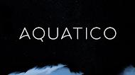 خط Aquatico المميز بوزن Regular مجانا