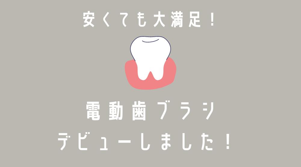 電動歯ブラシデビューしました。