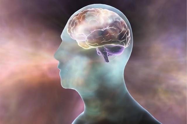SALUD. Logran objetivos farmacológicos para tratamientos del Alzheimer, la esquizofrenia y más