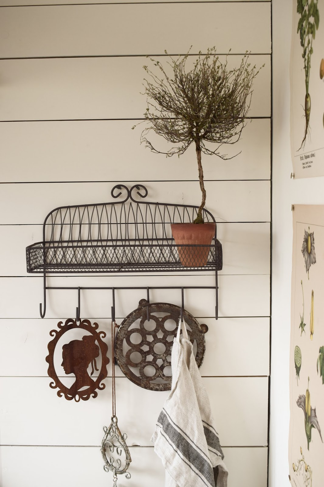 Landhausküche Küche nostaglisch Country Kitchen Dekoidee mit Thymian Stamm Deko Dekoration getrocknet Naturdeko natürlich dekorieren