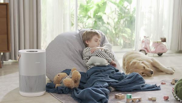 Dia Mundial do Animal: a Smartmi ensina-lhe como manter a qualidade do ar numa casa com animais de estimação