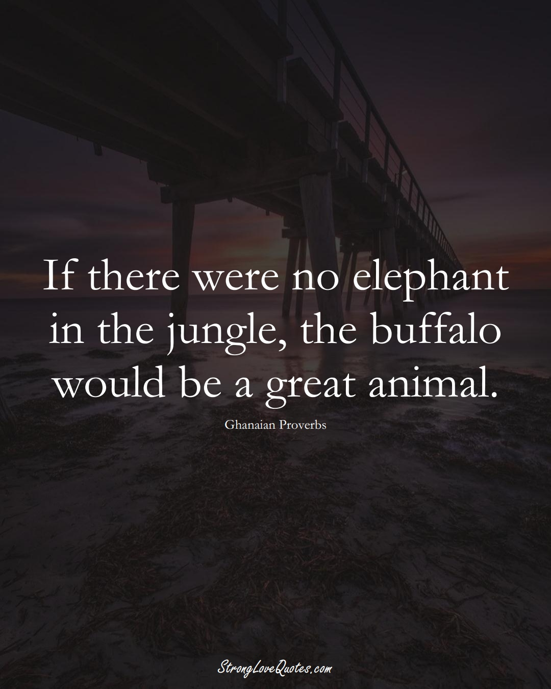 If there were no elephant in the jungle, the buffalo would be a great animal. (Ghanaian Sayings);  #AfricanSayings