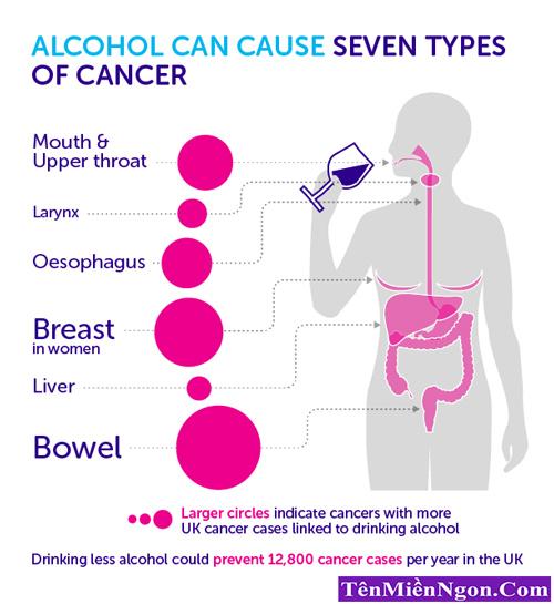 Mối quan hệ giữa rượu và ung thư Gan.